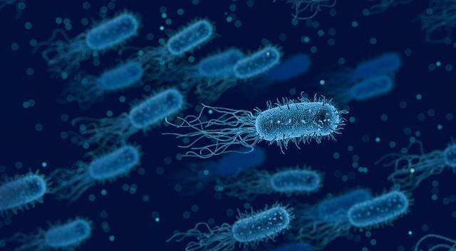 Czym jest probiotyk i kiedy warto go stosować?